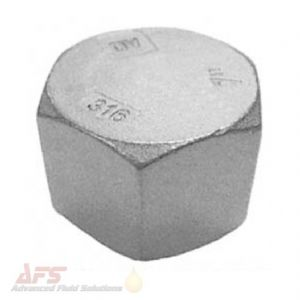1/4 BSPP Female Hex Blanking Cap - SS 316 Stainless Steel